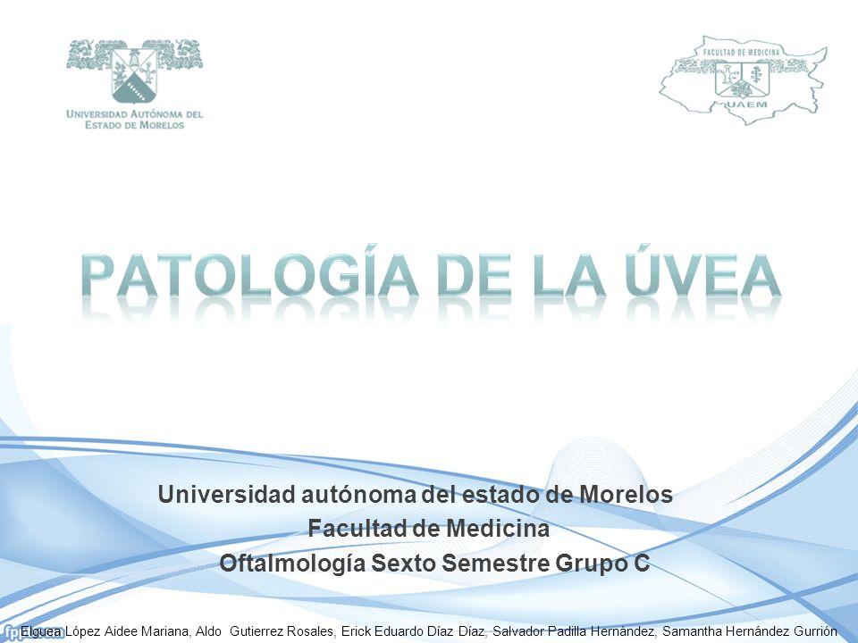 Patología de la úvea Universidad autónoma del estado de Morelos