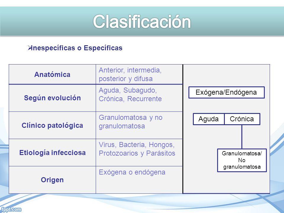 Clasificación Inespecíficas o Específicas Anatómica