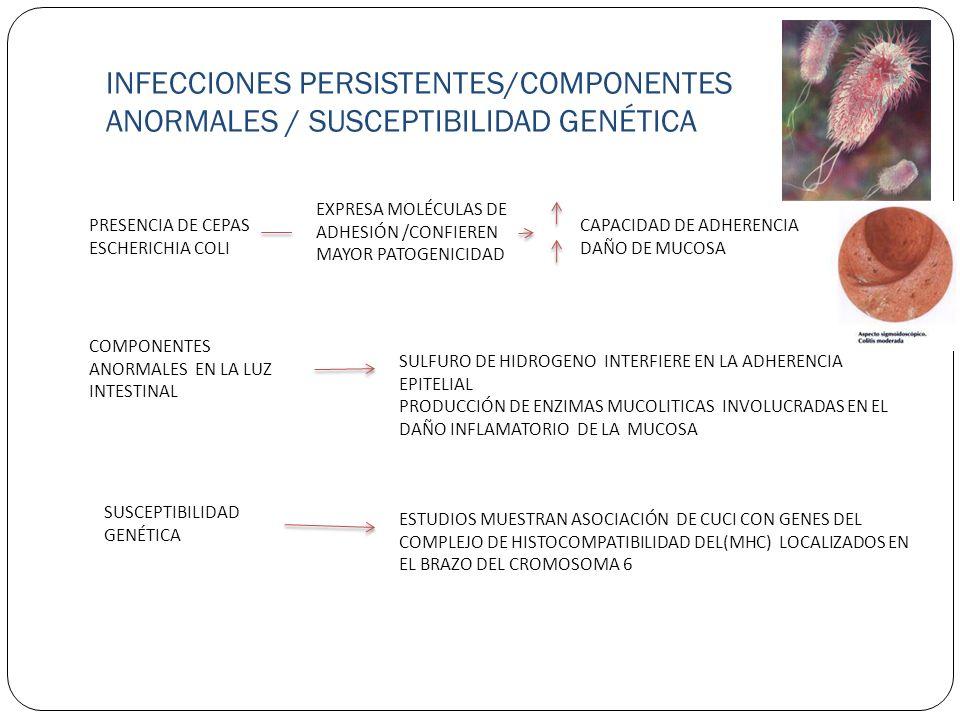 INFECCIONES PERSISTENTES/COMPONENTES ANORMALES / SUSCEPTIBILIDAD GENÉTICA