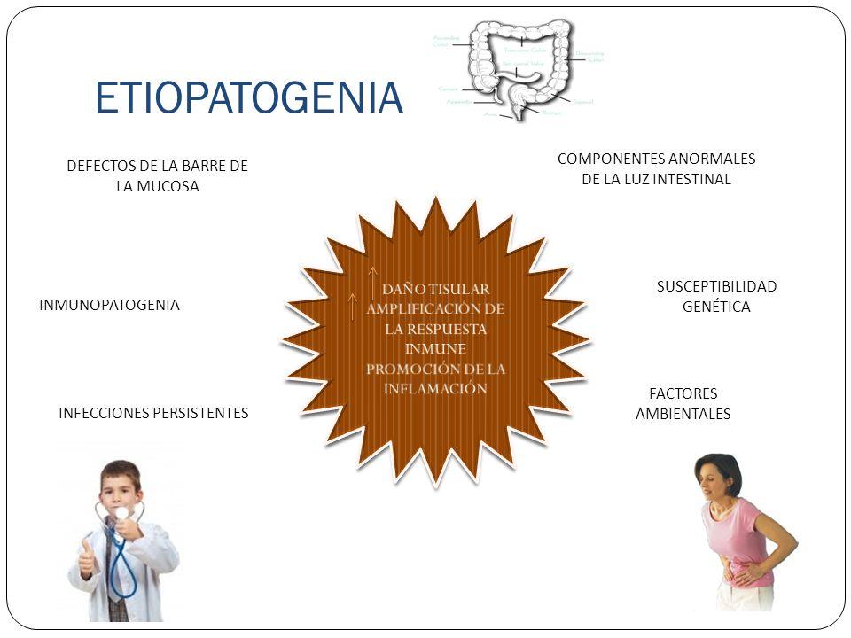 ETIOPATOGENIA COMPONENTES ANORMALES DE LA LUZ INTESTINAL