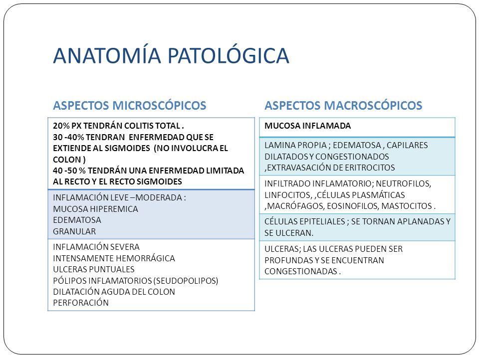 ANATOMÍA PATOLÓGICA ASPECTOS MICROSCÓPICOS ASPECTOS MACROSCÓPICOS