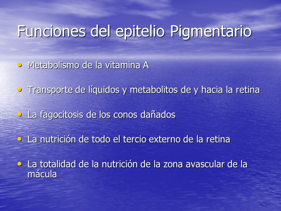 Funciones del epitelio Pigmentario