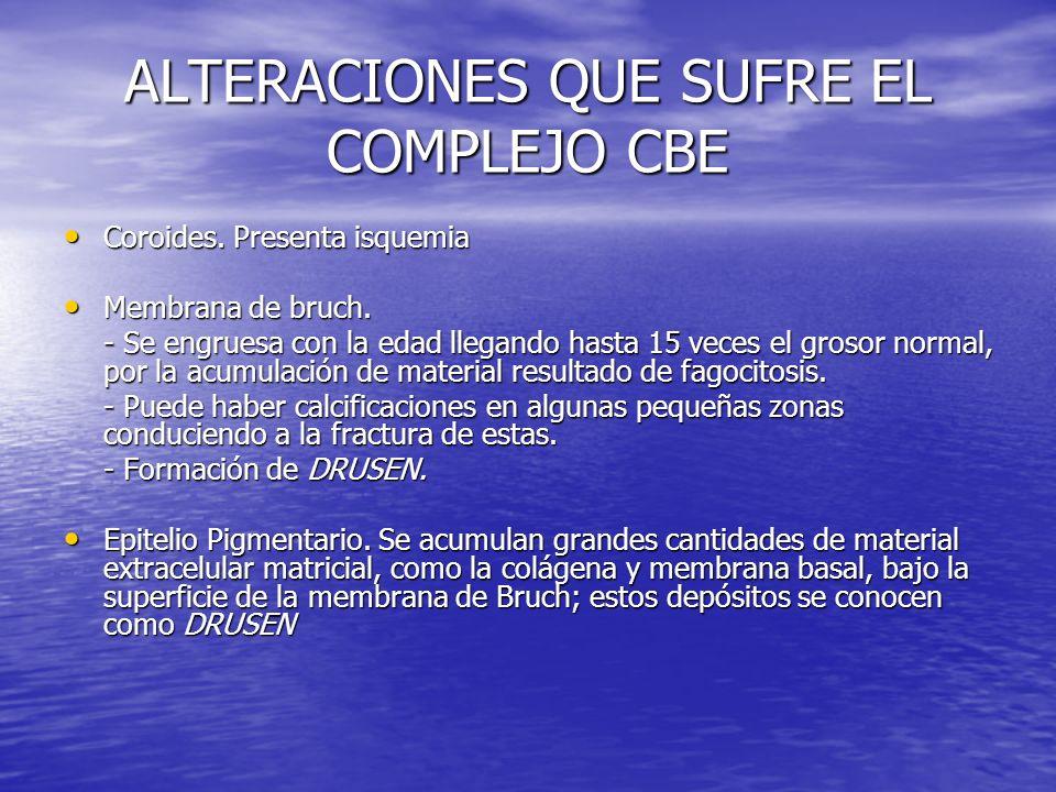 ALTERACIONES QUE SUFRE EL COMPLEJO CBE