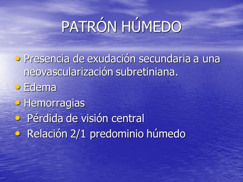 PATRÓN HÚMEDOPresencia de exudación secundaria a una neovascularización subretiniana. Edema. Hemorragias.