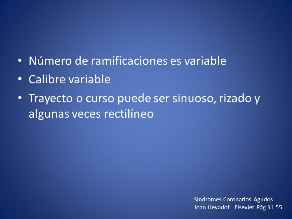 Número de ramificaciones es variable Calibre variable