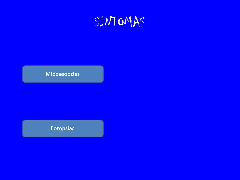 SINTOMAS Miodesopsias Fotopsias