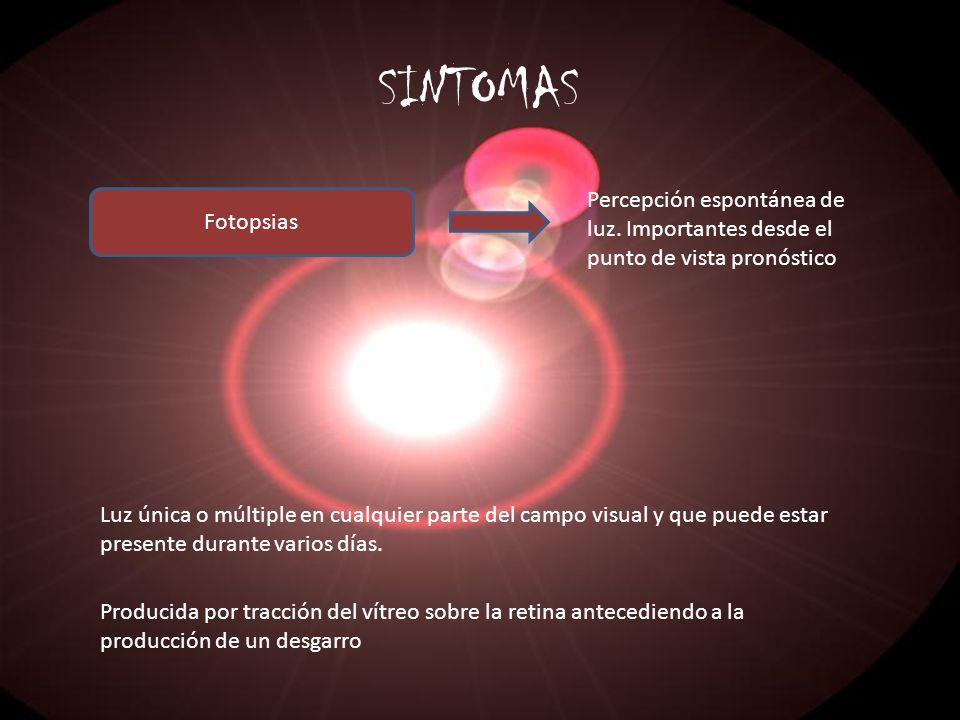 SINTOMASPercepción espontánea de luz. Importantes desde el punto de vista pronóstico. Fotopsias.