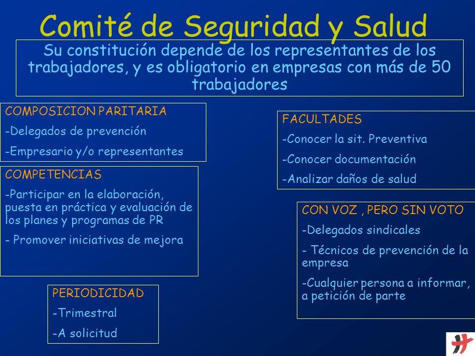 Comité de Seguridad y Salud