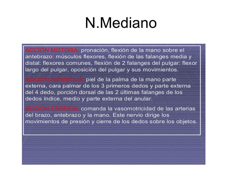 N.Mediano