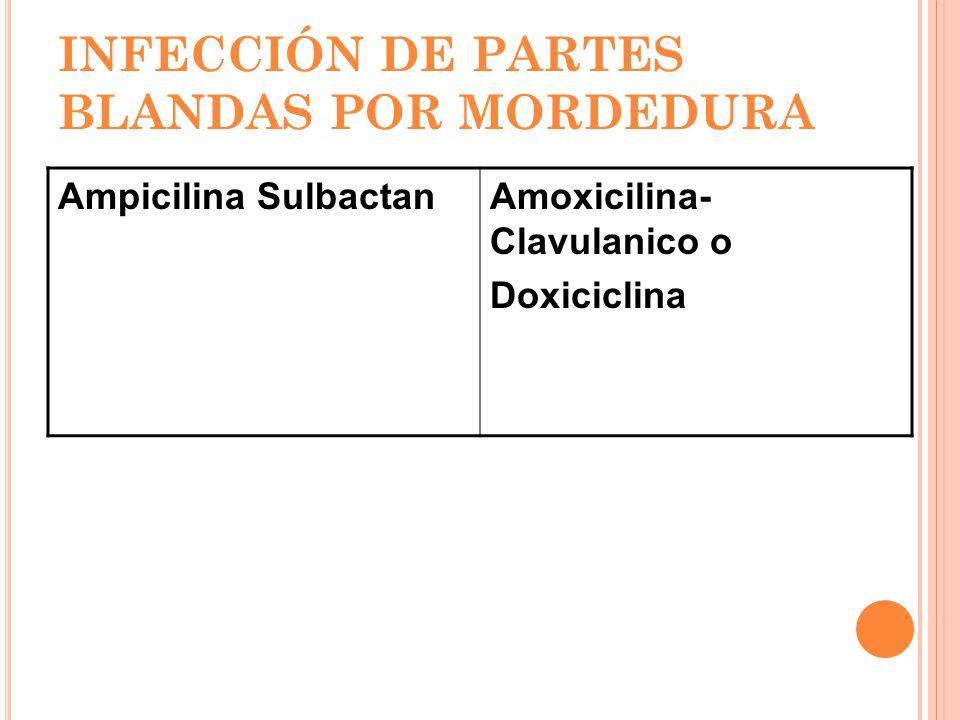 INFECCIÓN DE PARTES BLANDAS POR MORDEDURA