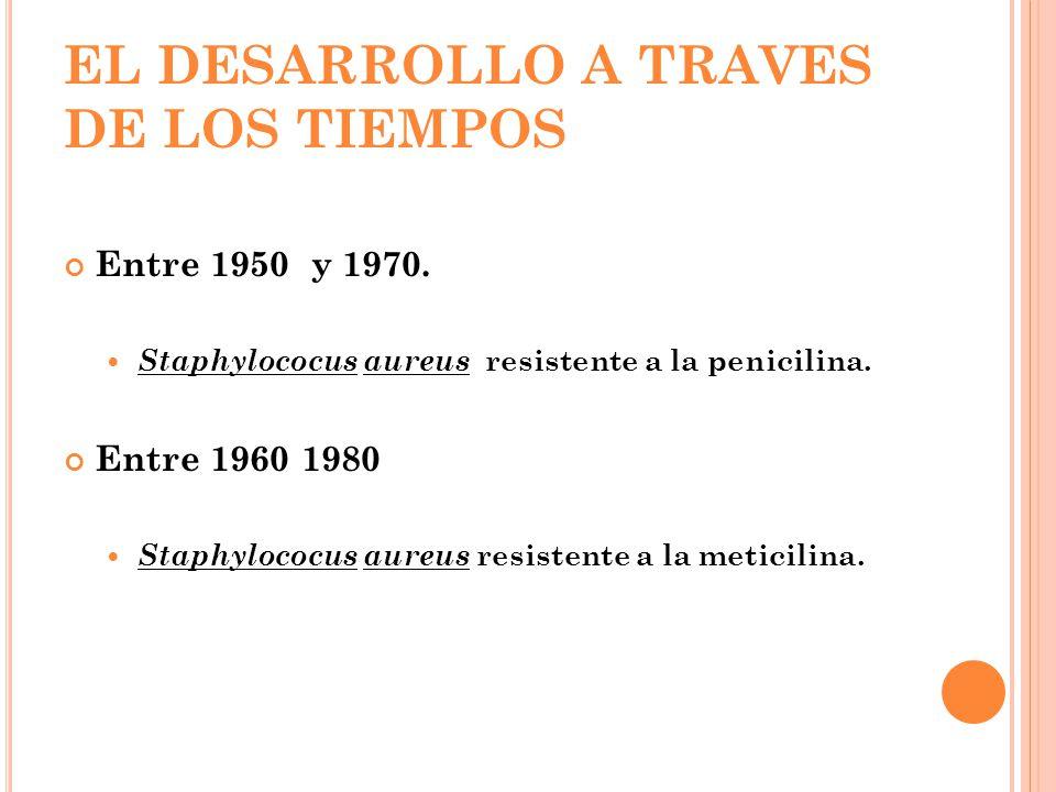 EL DESARROLLO A TRAVES DE LOS TIEMPOS
