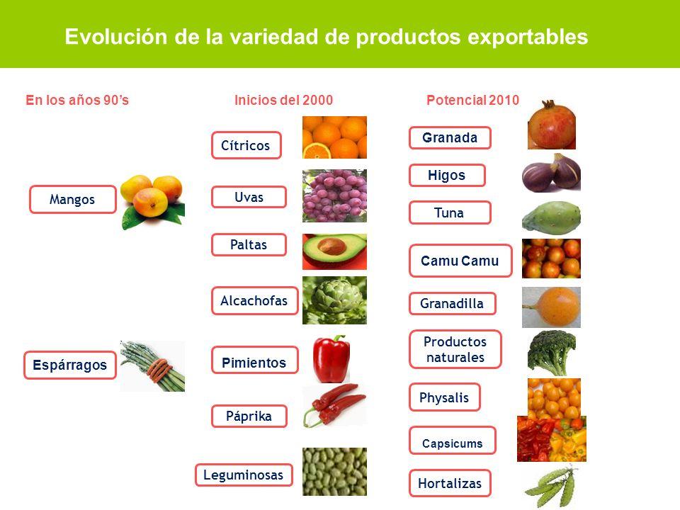 Evolución de la variedad de productos exportables
