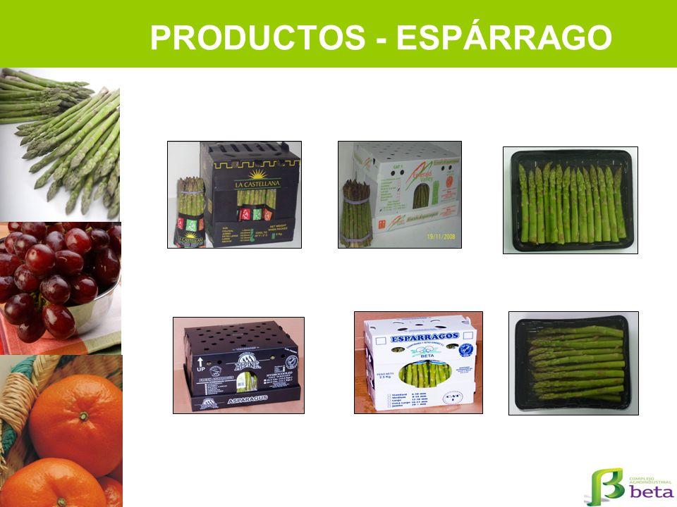 PRODUCTOS - ESPÁRRAGO