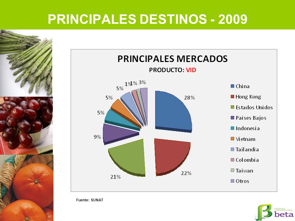PRINCIPALES DESTINOS - 2009