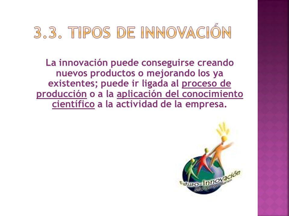 3.3. TIPOS DE INNOVACIÓN