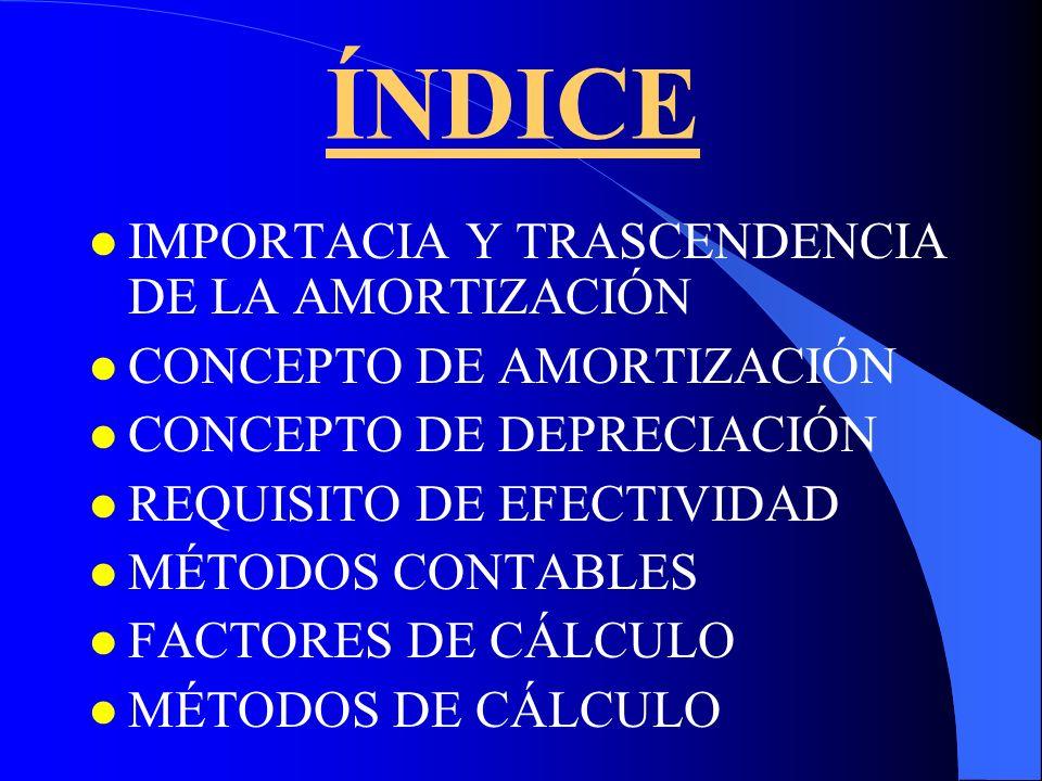 ÍNDICE IMPORTACIA Y TRASCENDENCIA DE LA AMORTIZACIÓN
