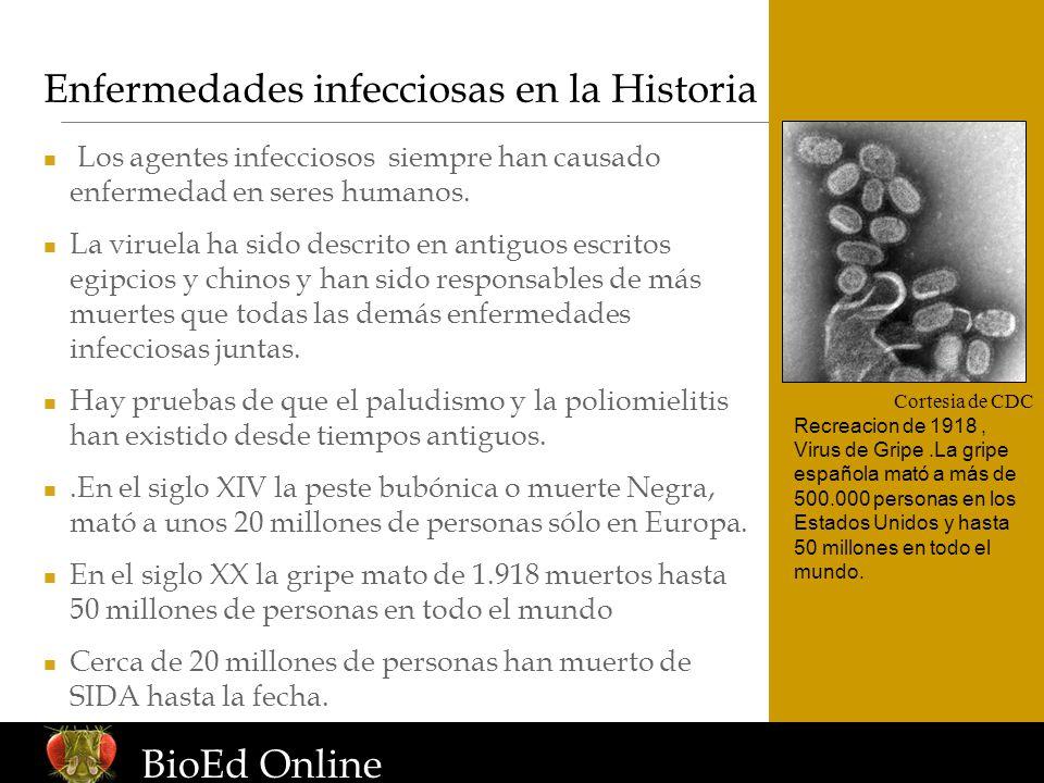 Enfermedades infecciosas en la Historia