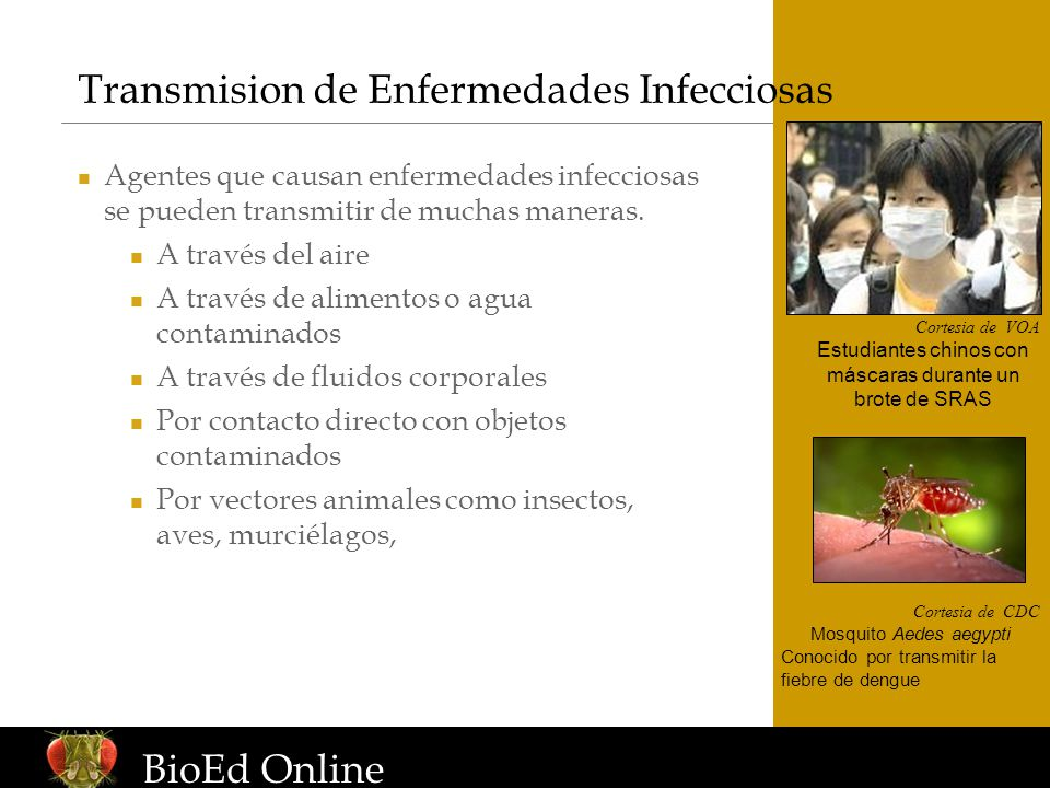 Transmision de Enfermedades Infecciosas