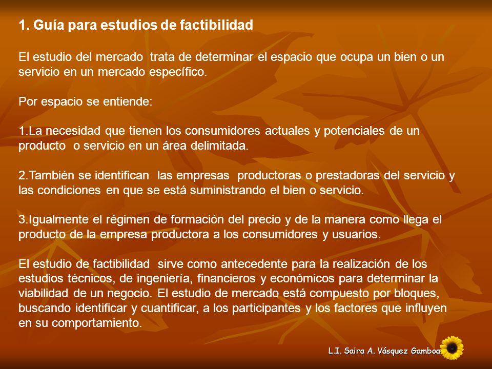 1. Guía para estudios de factibilidad