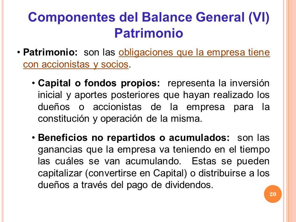Componentes del Balance General (VI)