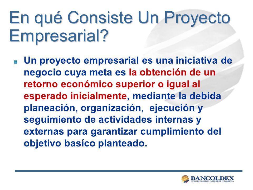 En qué Consiste Un Proyecto Empresarial