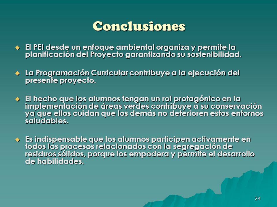Conclusiones El PEI desde un enfoque ambiental organiza y permite la planificación del Proyecto garantizando su sostenibilidad.