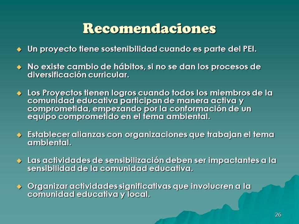 Recomendaciones Un proyecto tiene sostenibilidad cuando es parte del PEI.