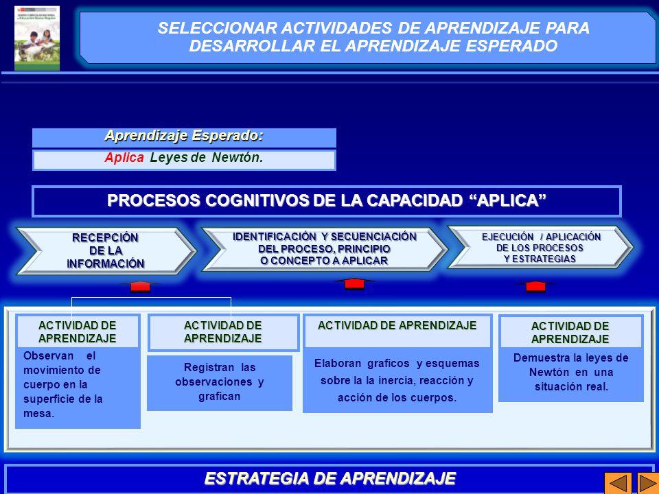 PROCESOS COGNITIVOS DE LA CAPACIDAD APLICA