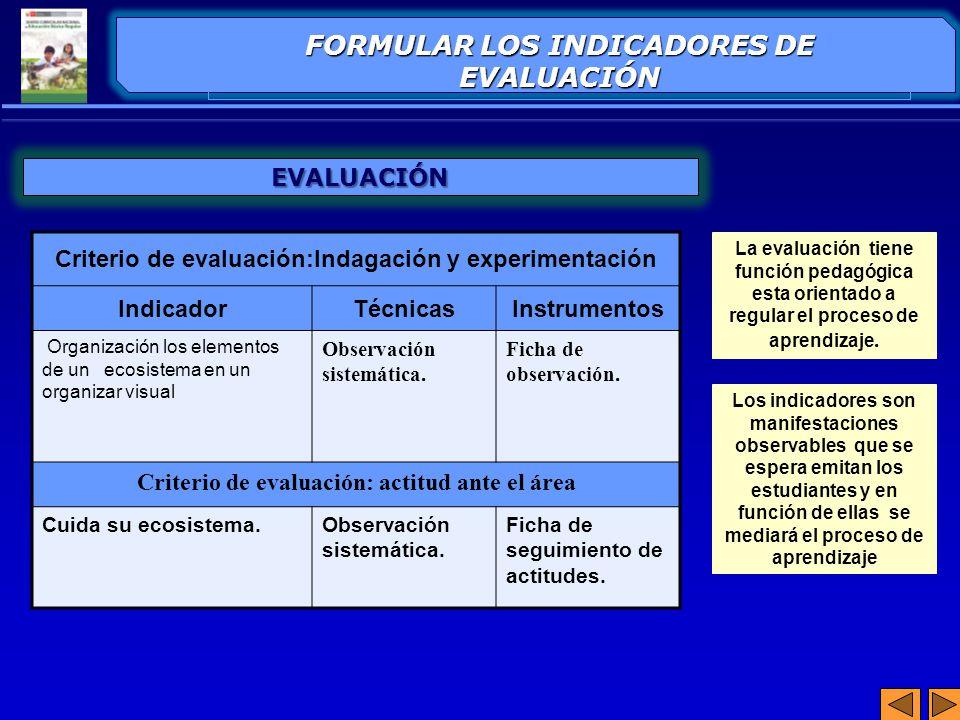 FORMULAR LOS INDICADORES DE EVALUACIÓN