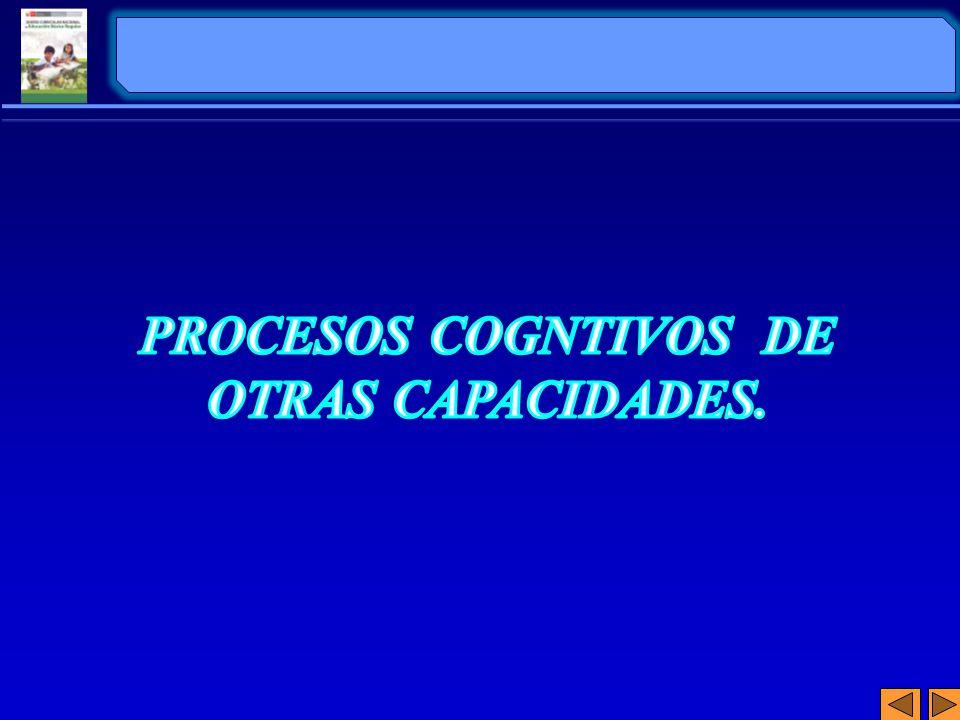 PROCESOS COGNTIVOS DE OTRAS CAPACIDADES.