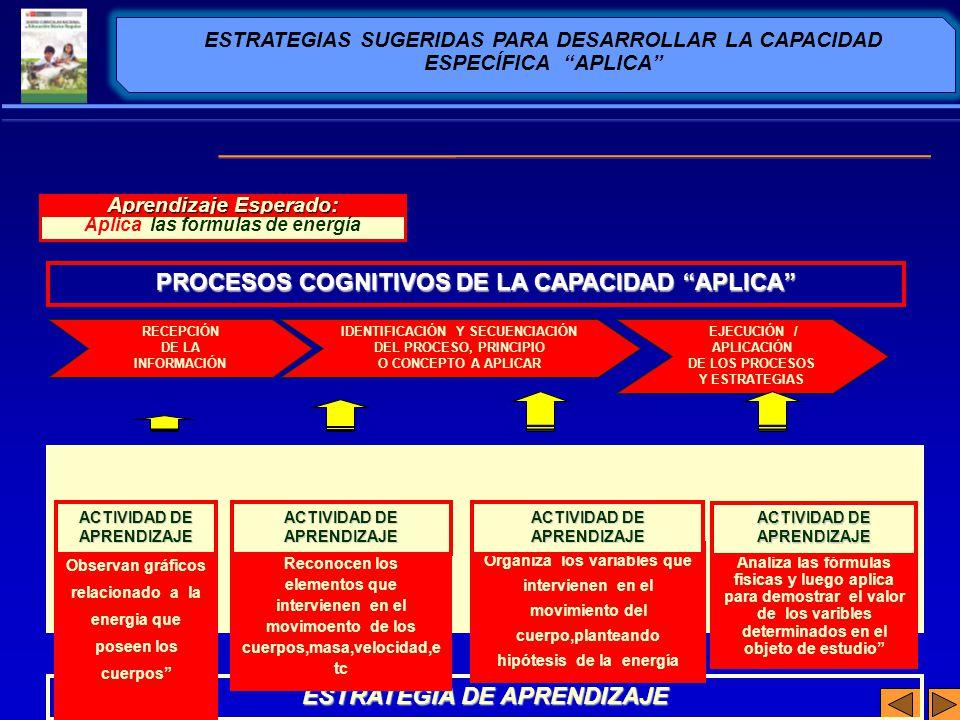 PROCESOS COGNITIVOS DE LA CAPACIDAD APLICA ESTRATEGIA DE APRENDIZAJE