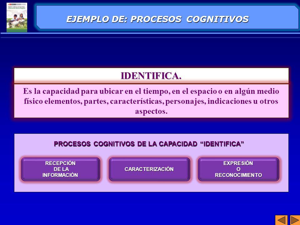 IDENTIFICA. EJEMPLO DE: PROCESOS COGNITIVOS