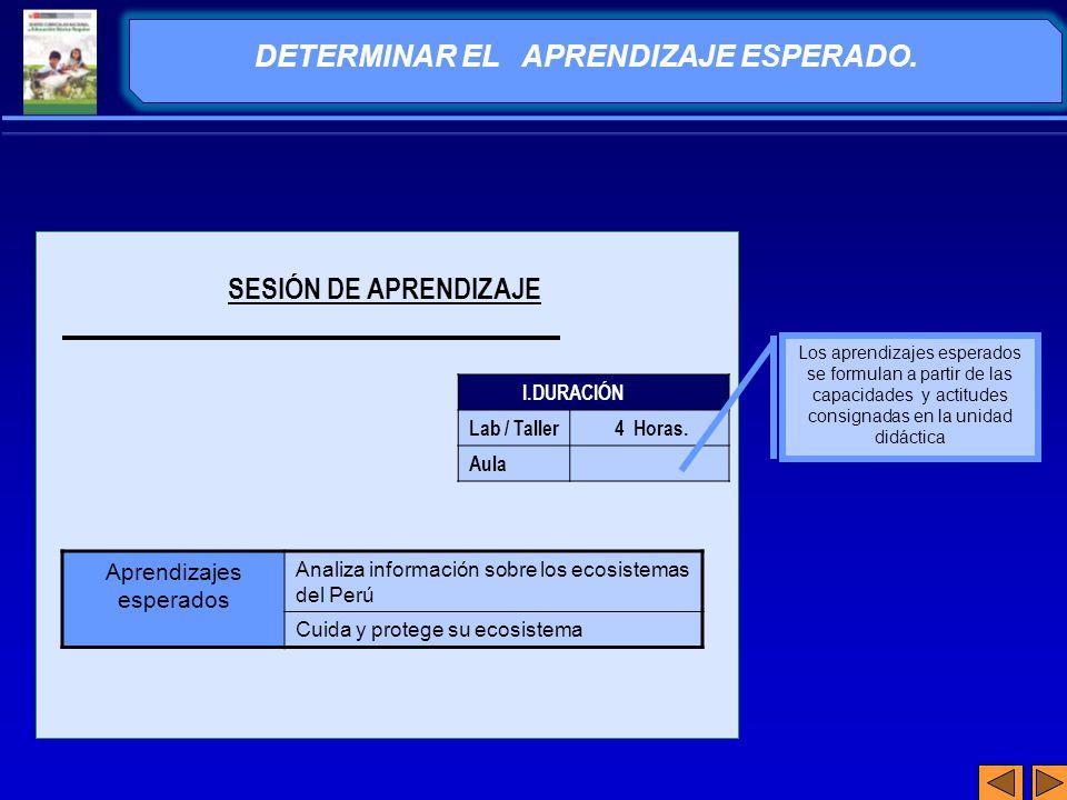 DETERMINAR EL APRENDIZAJE ESPERADO.