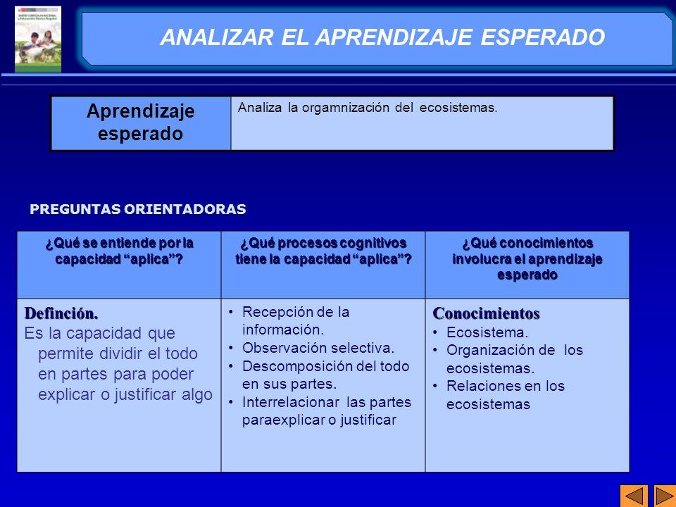 ANALIZAR EL APRENDIZAJE ESPERADO