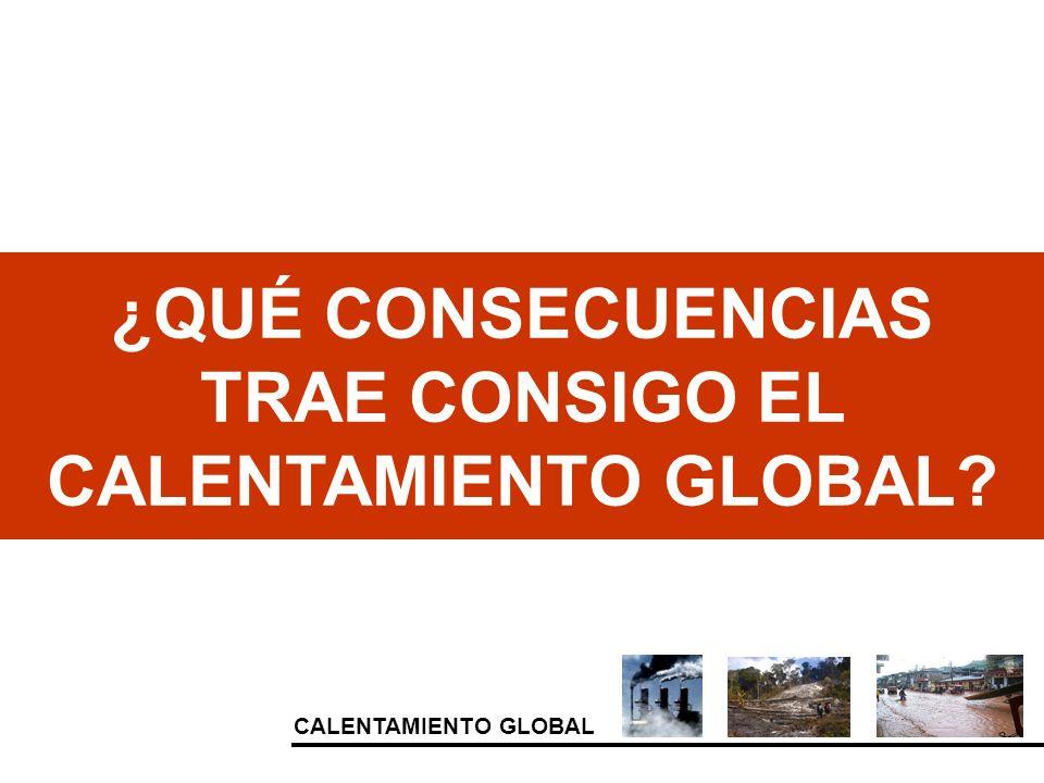 ¿QUÉ CONSECUENCIAS TRAE CONSIGO EL CALENTAMIENTO GLOBAL