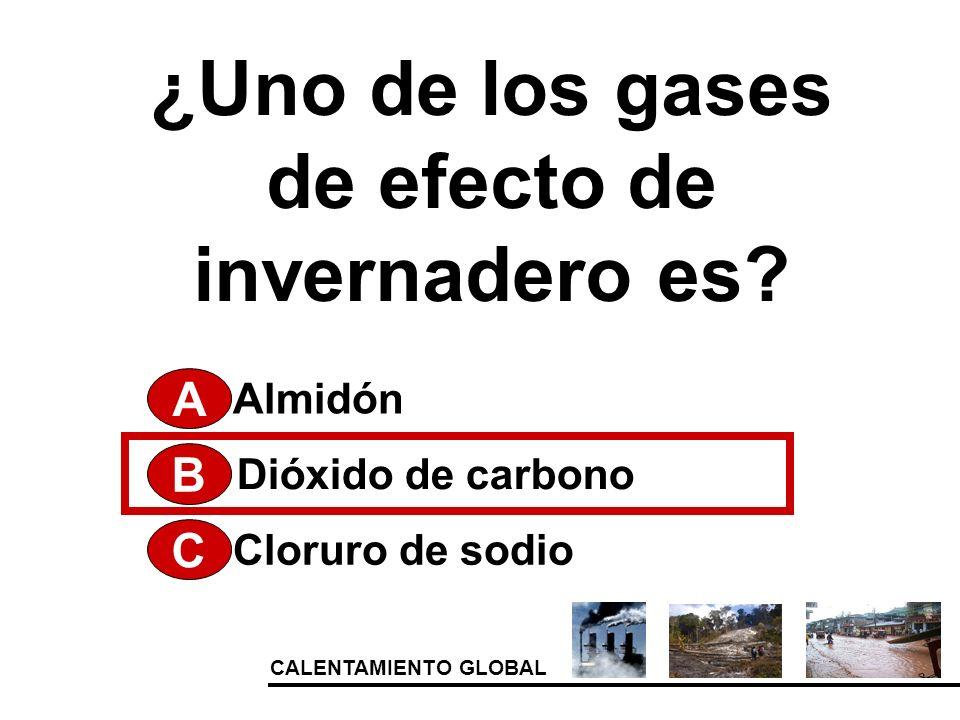 ¿Uno de los gases de efecto de invernadero es