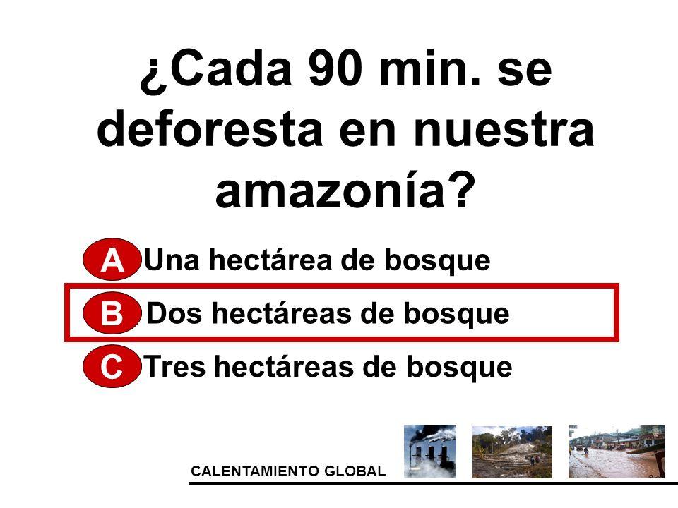 ¿Cada 90 min. se deforesta en nuestra amazonía