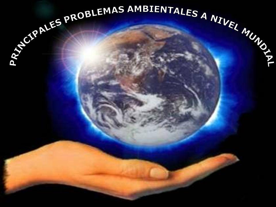 PRINCIPALES PROBLEMAS AMBIENTALES A NIVEL MUNDIAL