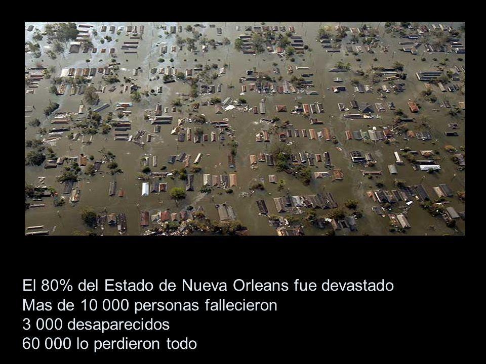 El 80% del Estado de Nueva Orleans fue devastado Mas de 10 000 personas fallecieron 3 000 desaparecidos 60 000 lo perdieron todo