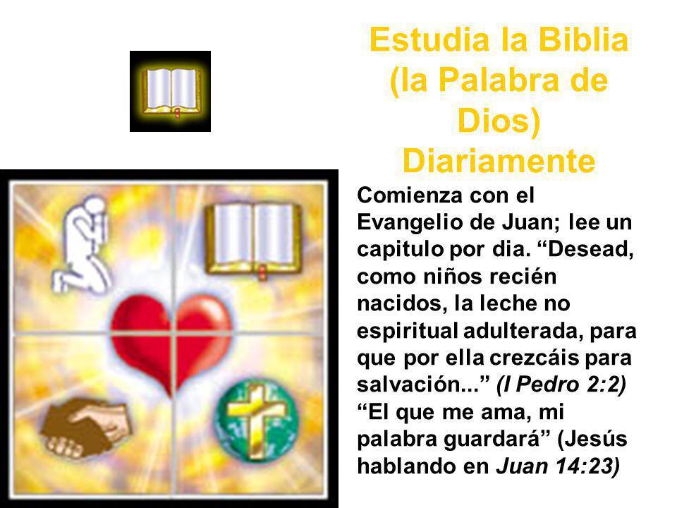 Estudia la Biblia (la Palabra de Dios) Diariamente