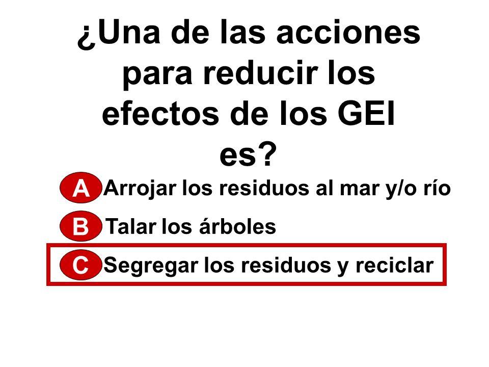 ¿Una de las acciones para reducir los efectos de los GEI es