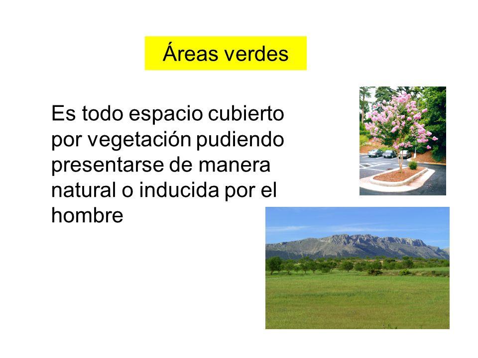 Áreas verdes Es todo espacio cubierto por vegetación pudiendo presentarse de manera natural o inducida por el hombre.