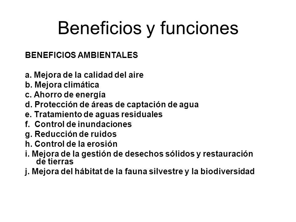 Beneficios y funciones