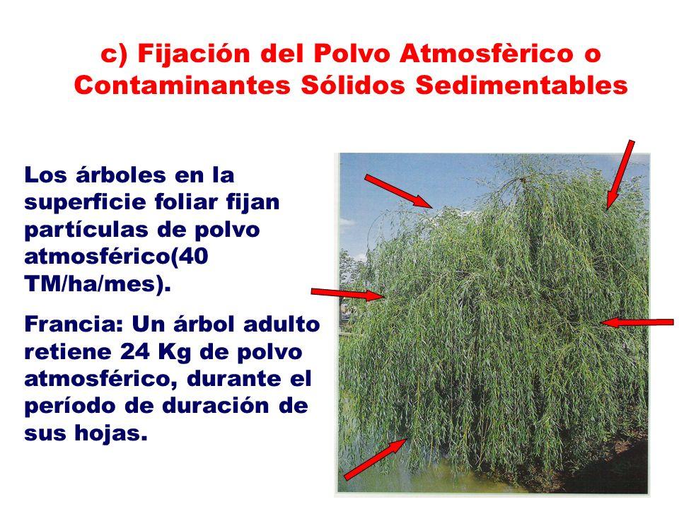 c) Fijación del Polvo Atmosfèrico o Contaminantes Sólidos Sedimentables