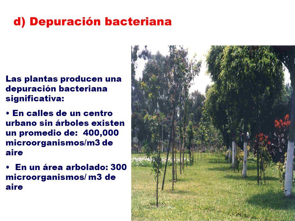 d) Depuración bacteriana