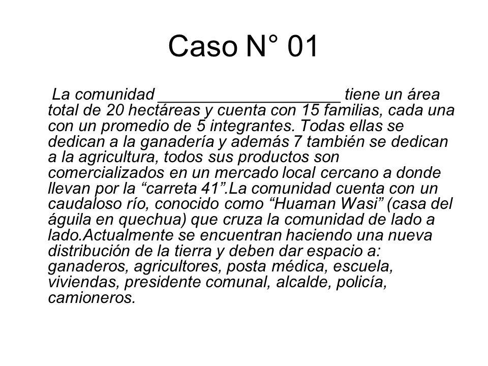 Caso N° 01