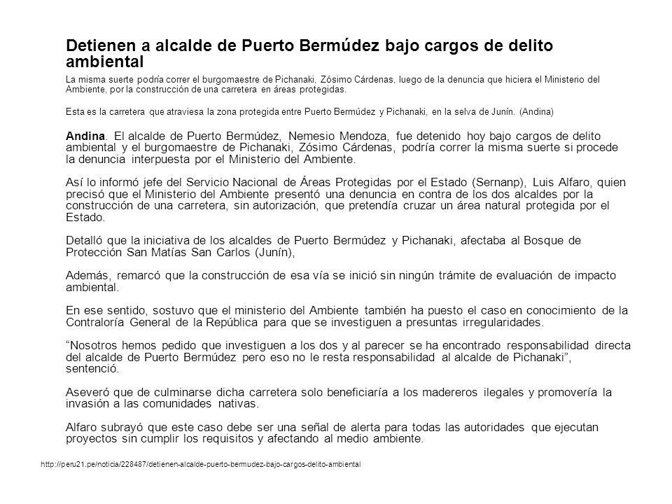 Detienen a alcalde de Puerto Bermúdez bajo cargos de delito ambiental