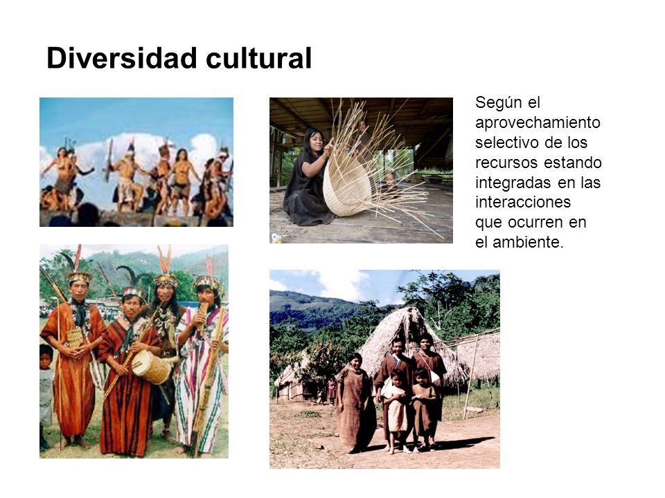 Diversidad cultural Según el aprovechamiento selectivo de los recursos estando integradas en las interacciones que ocurren en el ambiente.