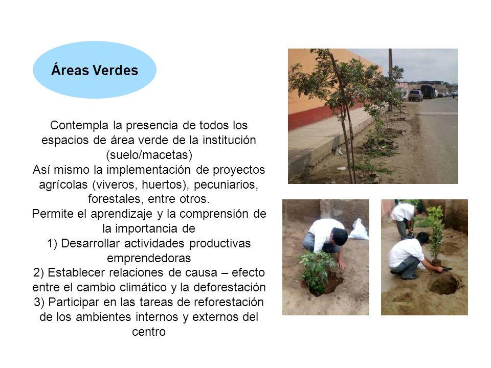 Áreas Verdes Contempla la presencia de todos los espacios de área verde de la institución (suelo/macetas)