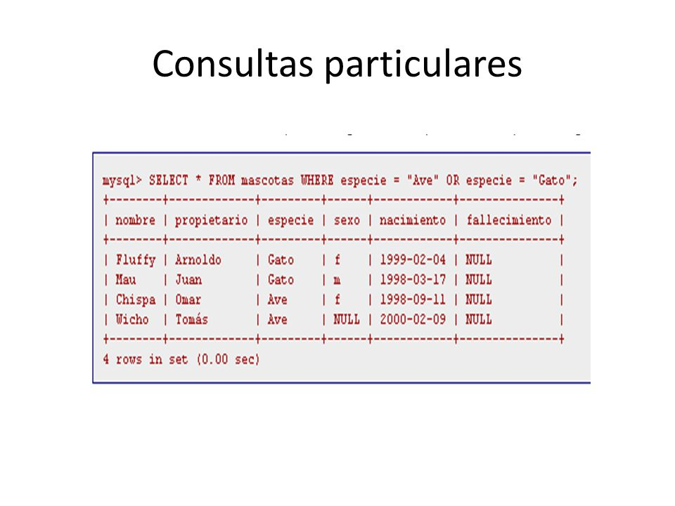 Consultas particulares